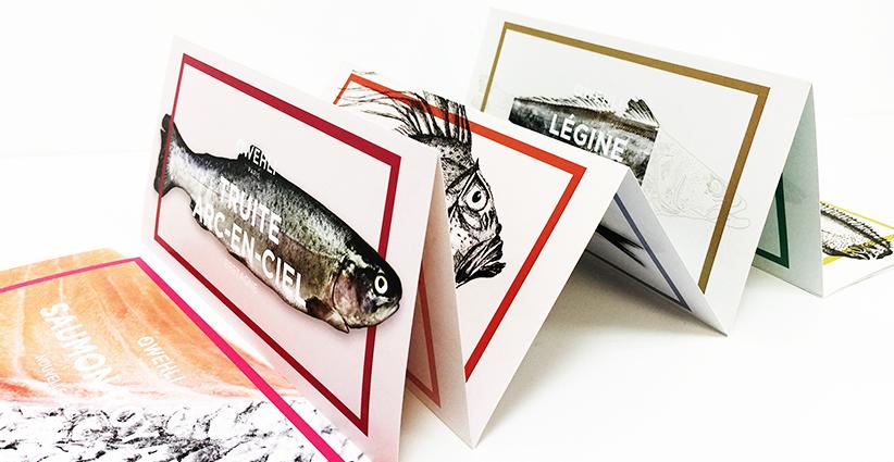 Dépliants quadri imprimeur paris imprimerie paris